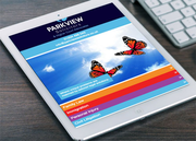 Web Design & Design and Digital Marketing Agency-Red Chilli